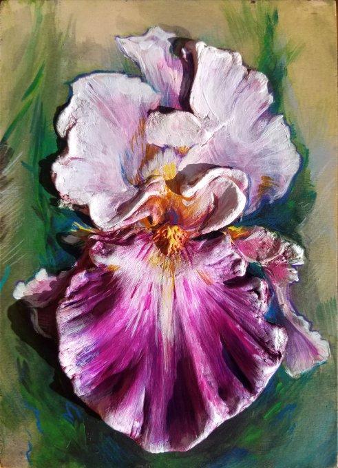 Sculpted Iris